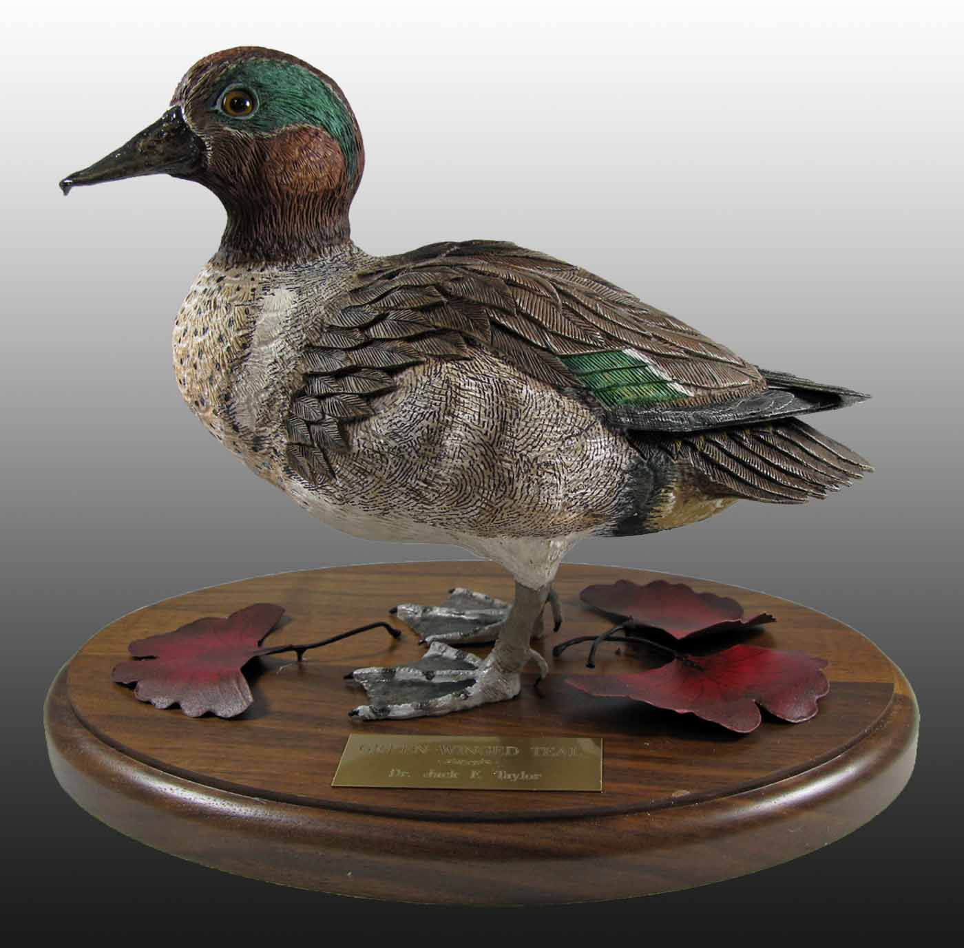 Green Wing Teal - Standing